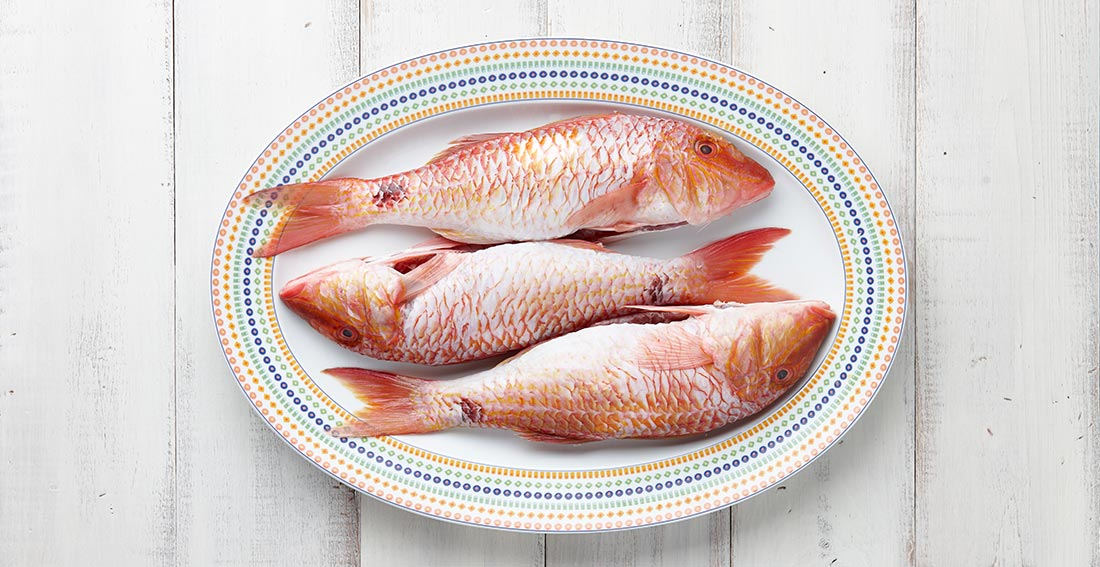 Rote Meerbarbe Produkte