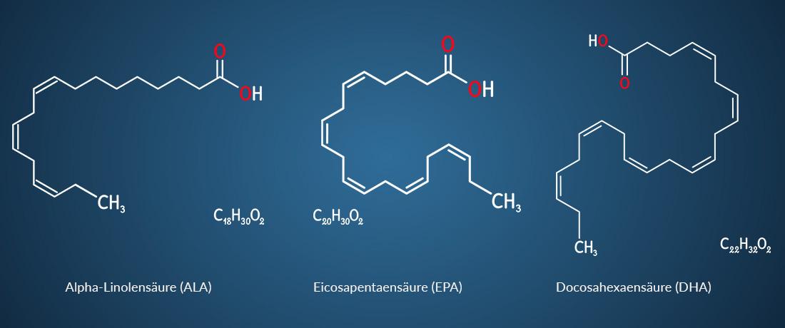 Omega-3-Fettsäuren ALA / EPA / DHA